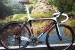 Ditec 912 Carbon Frameset met doorgetrokken Zadelpen  50 cm.