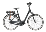 Qwic Premium MN7 Ebike_