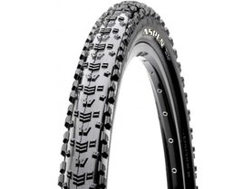 Maxxis Aspen vouwband 29x2.25 Exo TLR 120tpi